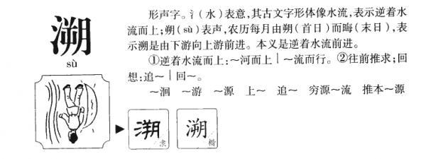 溯,溯的拼音,笔顺,意思解释,英文,五行属性,部首,结构